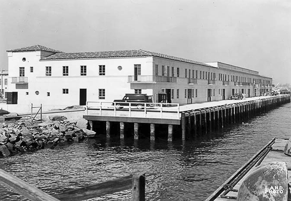 Los Angeles Municipal Fish Market, San Pedro, 1951